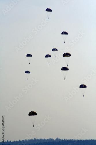 skydivers Wallpaper Mural