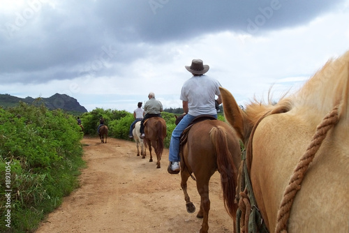 La pose en embrasure Equitation family on a trail on horseback