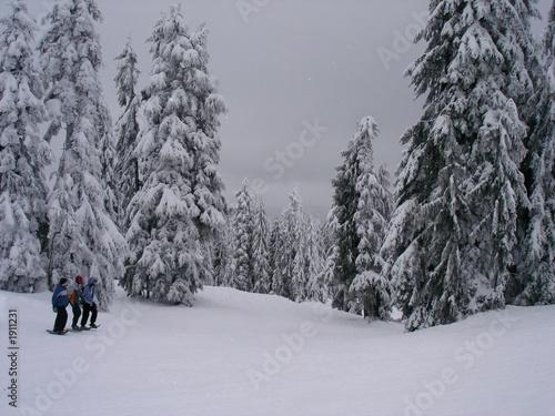 Papiers peints Alpes skiing