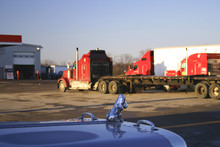 Chrome Dog Guards The Truck Stop