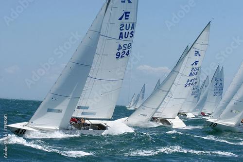 Garden Poster Sailing etchell sailing 4