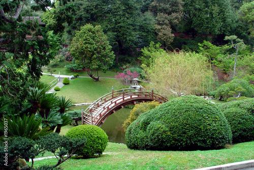 Poster Olive japanese garden