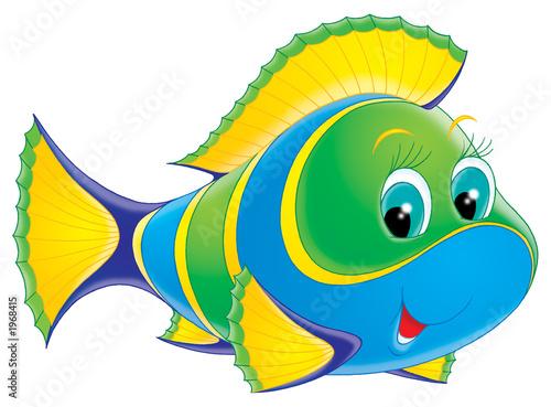 ryba-koralowa