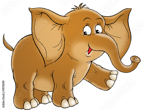 Foto-Plissee - elephant (von Alexey Bannykh)