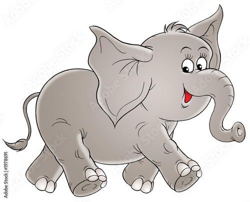 Papiers peints Zoo elephant