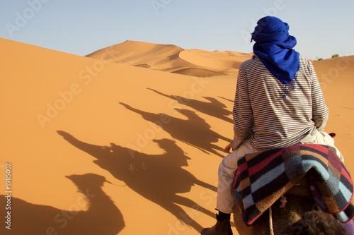 Poster de jardin Desert de sable caravan