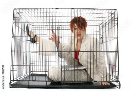Fotografie, Obraz  caged