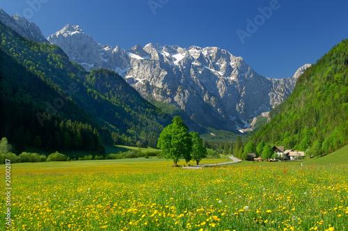 wiosna-w-alpejskiej-dolinie-w-polnocnej-slowenii