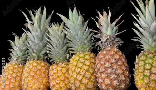 Fototapety, obrazy: pineapples. fruit  for making juice/ fruit salad