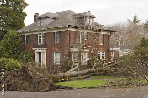 Foto op Plexiglas Onweer house with tree damage
