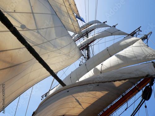 Fotografie, Obraz  tall ship sails