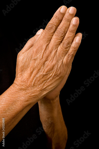 Canvas Print old hands praying