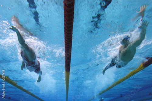 Fototapeta swimming action 1 obraz