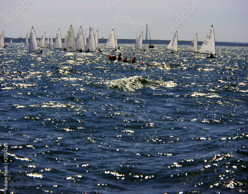 Fototapeta finn regatta