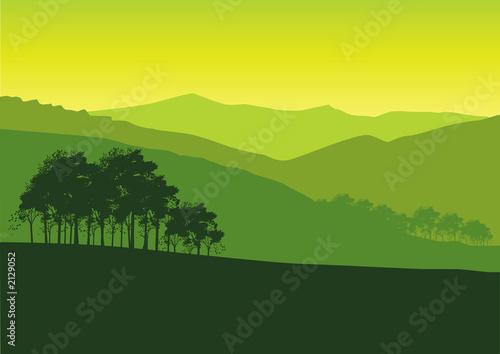 Fototapeta green landscape obraz na płótnie