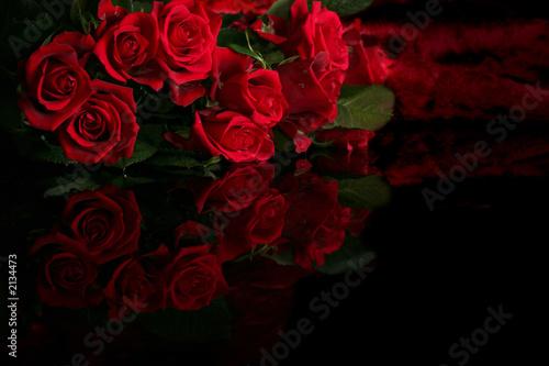 Zdjęcie XXL czerwona róża