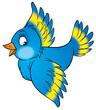 Leinwandbild Motiv blue bird