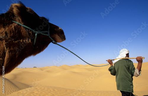 Valokuva  chamelier et son dromadaire dans le sahara