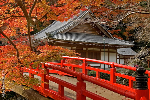 Staande foto Japan autumn temple