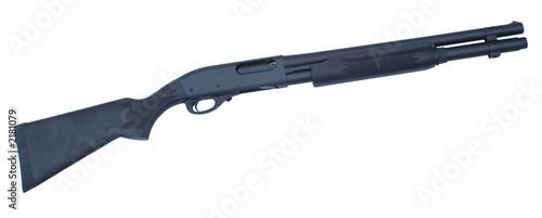 Cuadros en Lienzo shotgun