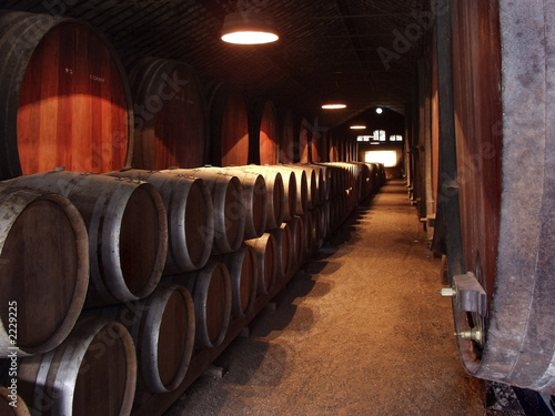 Fotografie, Tablou wine celler