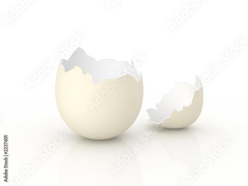 Fotografie, Obraz  egg shell