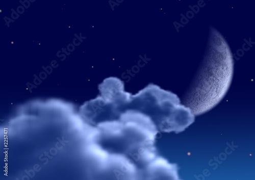 einzelne bedruckte Lamellen - moon (von Olga Galushko)
