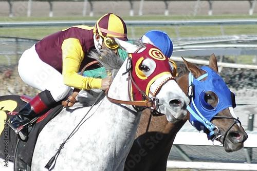Fotografie, Obraz racehorses & jockeys 5