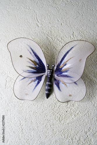Valokuva  the decorative butterfly