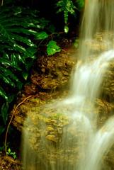 Fototapeta Wodospad golden waterfall
