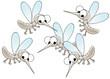 canvas print picture gnats