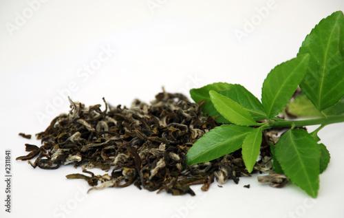 Fotografie, Obraz  green tea