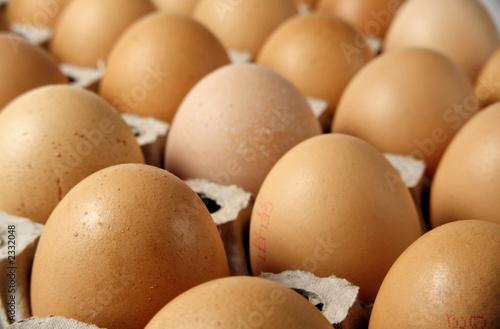 Valokuva  braune hühnereier
