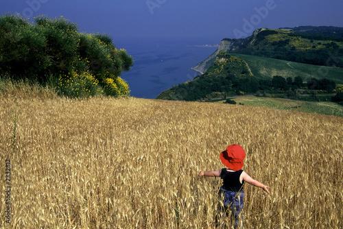 Fotografia, Obraz  paesaggio marchigiano