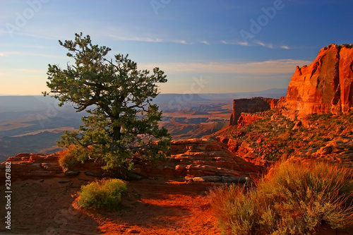 In de dag Bruin sunrise in canyonlands