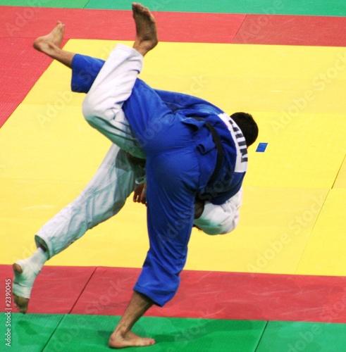 Poster Vechtsport judo