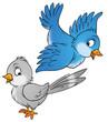 Leinwandbild Motiv birds