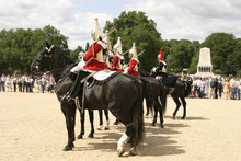 Royal Cavalry On Parade