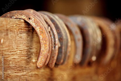 Fotografia horse shoes
