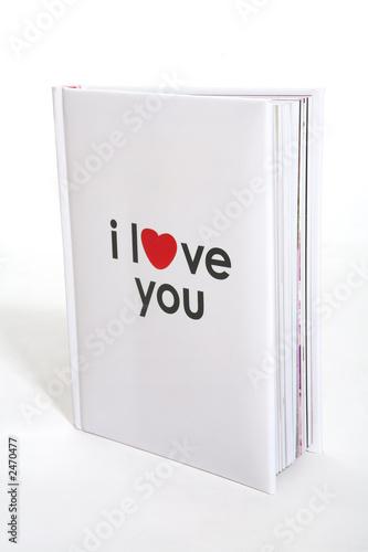 i love you book Canvas Print