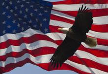 Old Glory And Bald Eagle