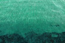 Piscine Verte Courte
