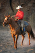 canvas print picture - cowboy on his horse