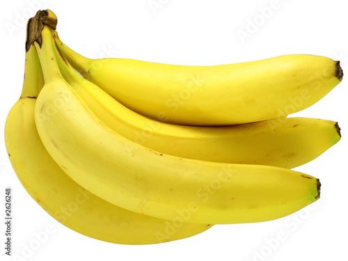 Fotografie, Obraz  banana bunch