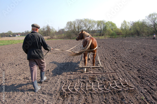 Photo  farmer at work , plowing the land