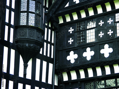 windows at bramall hall Canvas Print