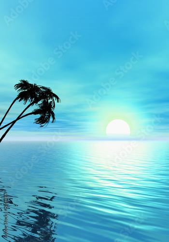 ocean-i-palmy