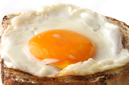 Poster Egg traditional fried egg on buttered toast