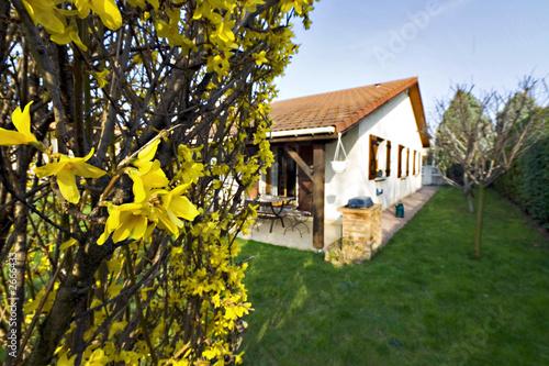 jardin de maison avec fleurs jaunes - Buy this stock photo and ...