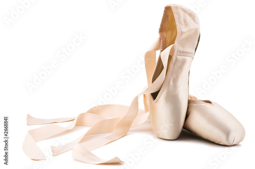 Canvastavla ballet shoes